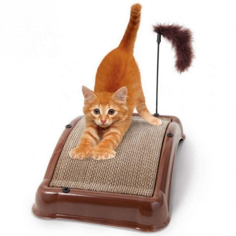 товары кошек цена