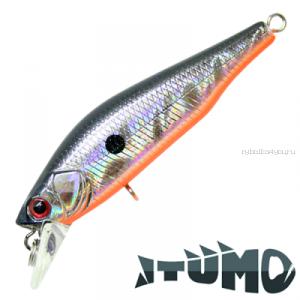 Воблер Itumo Rowdy 60SS 60 мм / 6,7 гр / цвет: 01