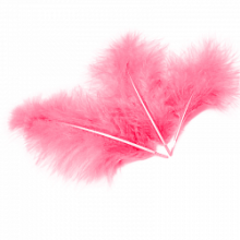Перо, ярко-розовый, 14 см/30 шт