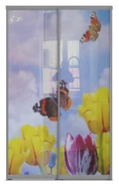 Две двери купе - Фотопечать, бабочки