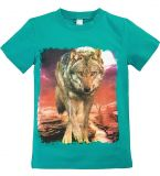 Бирюзовая футболка для мальчишек  купить от Bonito kids
