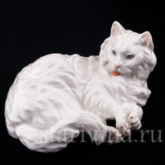 Изображение Ангорская кошка, Augarten Wien, Австрия, сер 20 в.