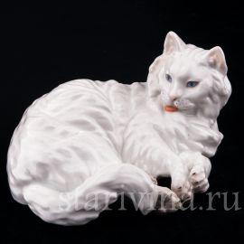 Ангорская кошка, Augarten Wien, Австрия, сер 20 в.
