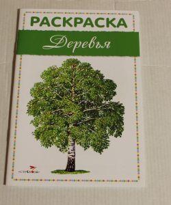 ! деревья россии, ячейка: 15