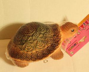 ! черепаха капа, ячейка: 76
