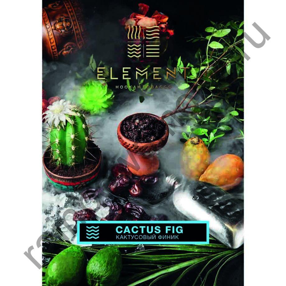 Element Вода 40 гр - Кактусовый финик (Cactus Fig)