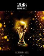 Тетрадь со сменным блоком ЧМ по футболу Золотой кубок 240 листов (арт. 240ТК5В1_17093)