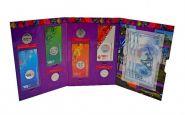 Набор Сочи (4 цветных в блистерах + 25р 4шт 2014+ 100 рублей серии Аа, аа, АА)