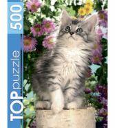 TOPpuzzle. ПАЗЛЫ 500 элементов. Котенок в цветах (арт. КБТП500-6798)