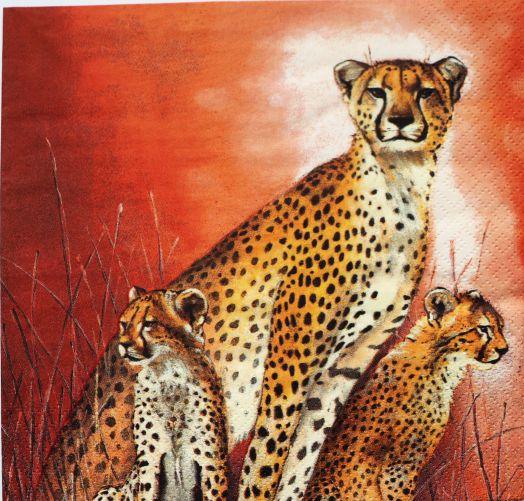 Салфетка бумажная 30*30 Семья гепардов