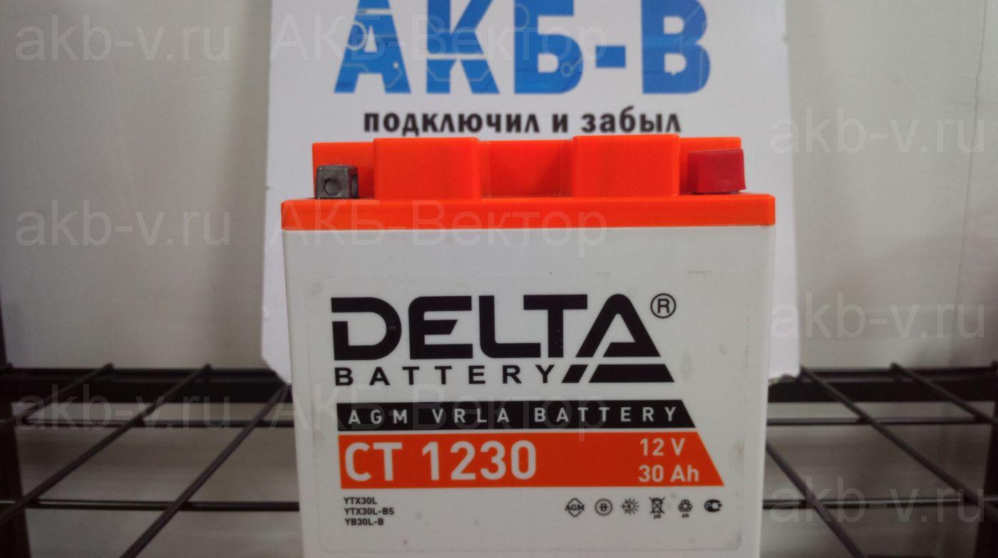 Delta СТ 12-30 (30Ач) YIX30L,YTX30L