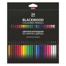 Карандаши цветные Hatber 24 цв. BLACK DIAMOND супермягкий стержень с заточ. в карт.короб. с европодвесом (арт. BKc_24830)