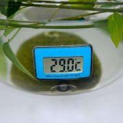 Водонепроницаемый цифровой ЖК-дисплей термометр