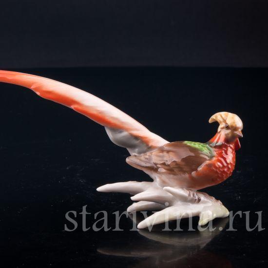 Изображение Золотой фазан, миниатюра, Hutschenreuther, Германия