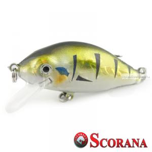 Воблер Scorana Sailor Shad 60F 60 мм / 6 гр / Заглубление: 0 - 1 м / цвет: BP