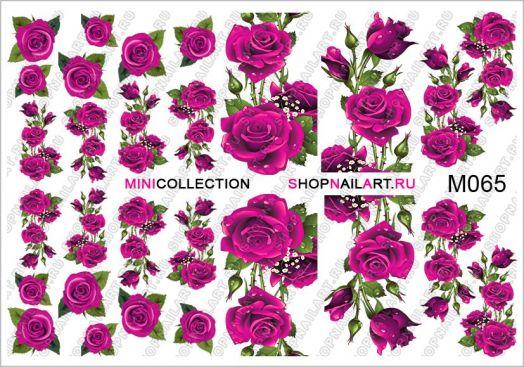 Слайдер-дизайн M065 - Розовые розы