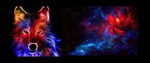 Волк огненный кулирка с лайкрой