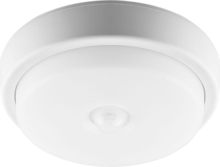 Светодиодный светильник ЖКХ Feron AL3006 29610 12W