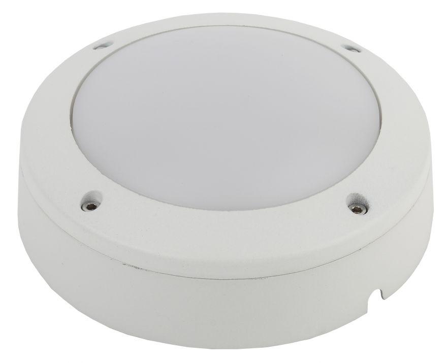Светодиодный светильник ЖКХ ЭРА SPB-7-12-R  12W