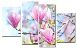 Весны творение