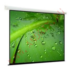 Экран моторизированный Viewscreen Breston (16:10) 305*305 (297*186) MW