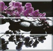 Composicion Wellness Purple