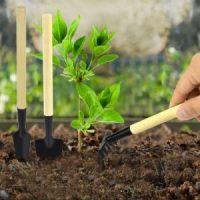 Мини-инвентарь для комнатных растений, 3 предмета (1)