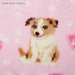 Плед велсофт 130х150  см, Dog св-розовый, 280 гр/м полиэстер 2796042