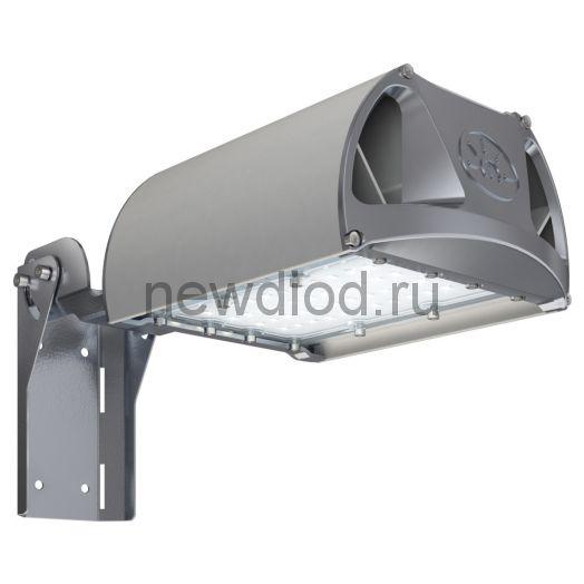 Уличный светильник TL-STREET 55 5К F2 D