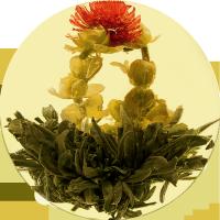 Рождение Венеры с ароматом жасмина - элитный китайский связанный чай