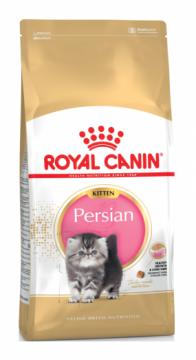 Киттен Персиан 32 (Kitten Persian)