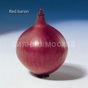 Лук-севок Ред Барон, 100 г