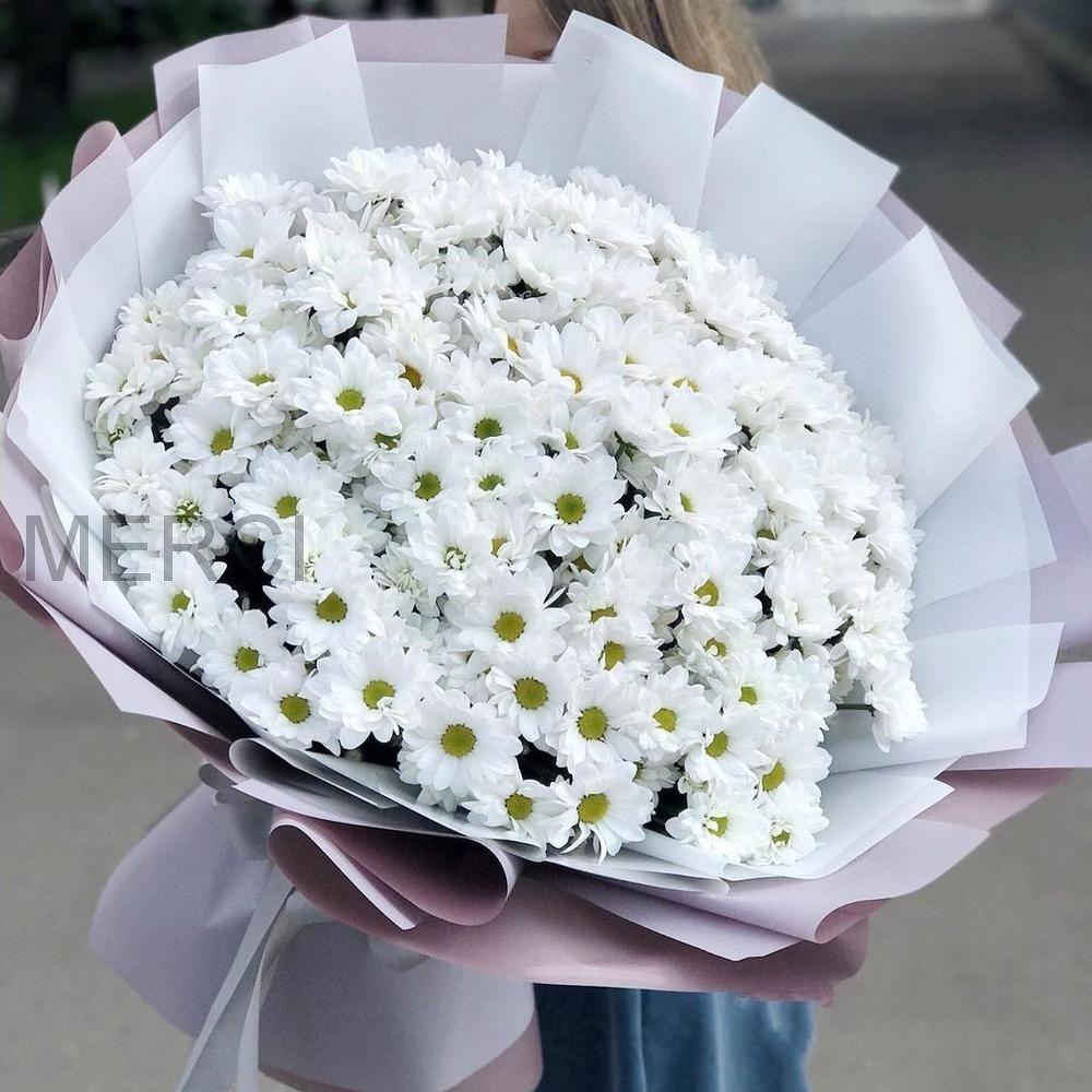 Букет из 25 белых хризантем Бакарди
