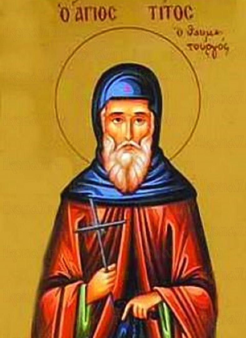 Икона Тит Чудотворец преподобный
