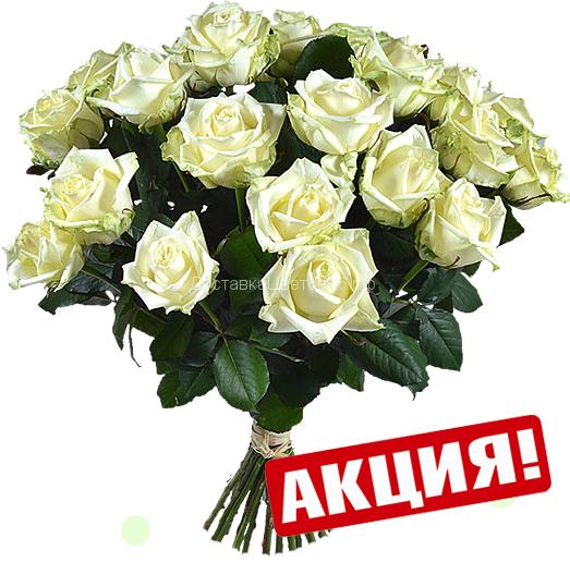 Белые розы Валентина.  От 15 роз в букете.