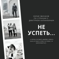 Страх не успеть (Дмитрий Калинкин)
