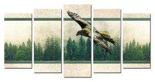 Пролетая над лесом