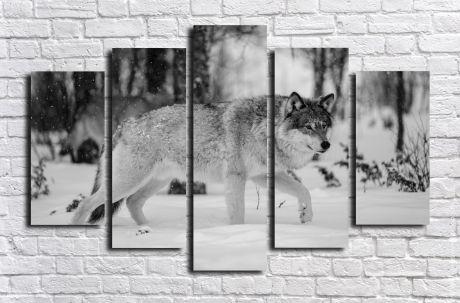 Модульная картина Животные 24