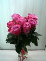 7 роз - Дип Пурпл (60 см)