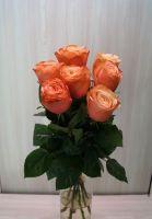 7 роз - Кохала (60 см)