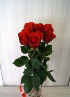 7 роз - Нина (60 см)
