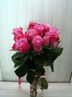 11 роз - Дип Пурпл (60 см)