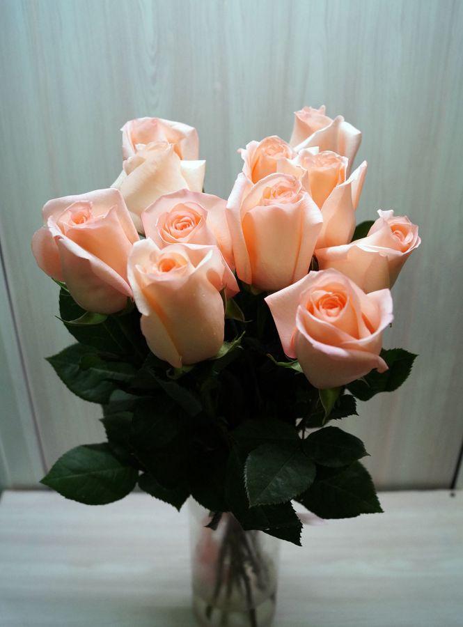 11 роз - Ангажимент (60 см)
