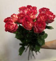 15 роз - Игуазу (60 см)