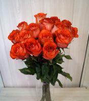 15 роз - Игуана (60 см)