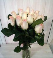 15 роз - Сеньорита (60 см)