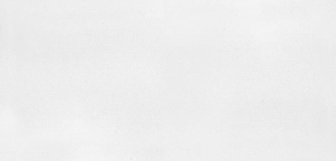 16006 | Авеллино белый