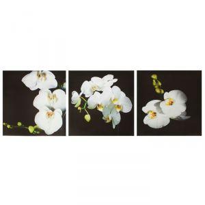 """Модульная картина на подрамнике """"Орхидея"""", 3 шт. — 28?28 см, 28?84 см"""