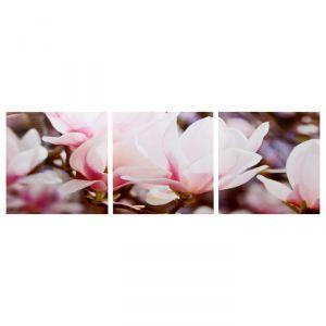 """Модульная картина """"Магнолия"""" (3-35х35) 35х105 см 4983613"""