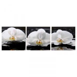 """Модульная картина """"Три орхидеи"""" (3-35х35) 35х105 см 4983609"""